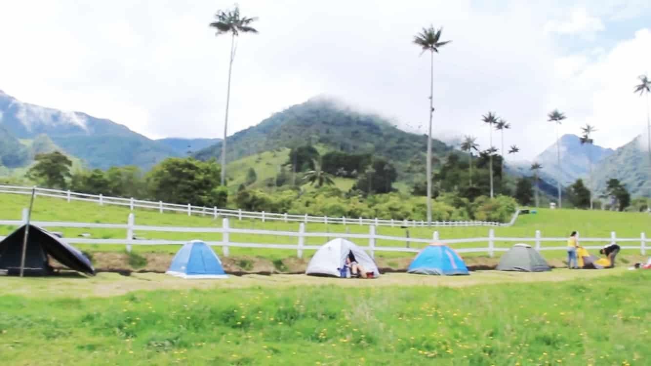 Acampada en el Valle de Cocora