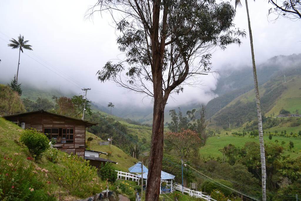 alojamiento cabañas truchas cocora en el valle de cocora - salento