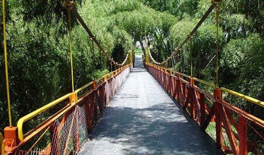 Puente_colgante_parque_del_cafe